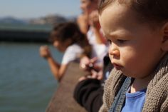 this little guy wasn't too impressed by the sea lions.