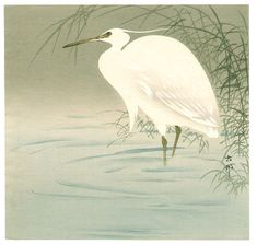 白鷺 しらさぎ Shirasagi Wading Egret 小原古邨 おはら こそん Ohara Koson