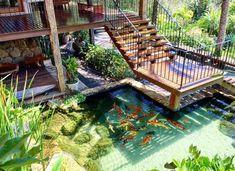 Pond Design, Tropical Design, Garden Bridge, Outdoor Structures, Google