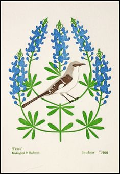 Texas: mockingbird and bluebonnet. Mara Murphy and Anna Branning's Etsy Shop boasts the first bunch of prints from their Birds and Blooms of the 50 States series - Lo's List // Dutch Door Press