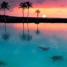 Um belo fim de tarde no Hawai para inspirar sua semana!