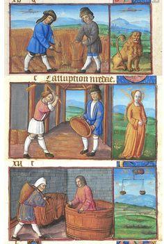 Juillet Lion moisson/ Août Vierge Ventilation des grains/ Septembre Balance Vendanges Morgan Library