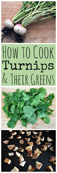 Turnips are a veggie that has gotten a bad rap, but they are actually super tasty! Here are some easy turnip and turnip green recipes.