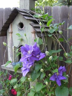 No garden is complete without a #birdhouse. Pic by Bernideen. ~ #Gardening Ideas