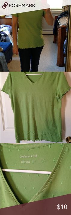 Coldwater Creek Top EUC Coldwater Creek short sleeved top, V-neck, green with all-over embroidered embellishment, eyelet- edged sleeves and bottom Coldwater Creek Tops Tees - Short Sleeve