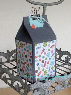 Schönes aus Papier handgemacht!: Anleitung für den Maxi-Milchkarton
