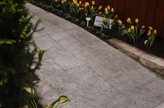 """SILVER VALLEY   STONE TYPE: LIMESTONE   TOP FINISH: BRUSHED   BOTTOM FINISH: SAWN   EDGE FINISH: SAWN   DIMENSIONS: 1'X1' TO 2'X3'   THICKNESS: 1"""", 1.25"""", 2"""", 6""""   ALSO AVAILABLE IN:  COPING, TREADS, STEPS"""