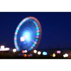 Instagram【sc_n14】さんの写真をピンしています。 《28.08.09🔻Osaka ( Expo Memorial Park ) . . まるまる観覧車🎡 . . ::::::::::::::::::::::::::::::::::::::::::::::::::::::::::::::::::::: #玉ボケ #キラキラ #夜景 #観覧車 #万博記念公園 #team_jp_ #wp_japan #japan_of_insta #一眼レフ #広角 #単焦点 #単焦点レンズ #単焦点レンズの世界 #東京カメラ部 #Canon #EOSKissX8i #CanonEOS #ファインダー越しの私の世界 #写真撮ってる人と繋がりたい》