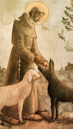 Francis by Fulvio Pennacchi Catholic Saints, Patron Saints, St Francisco, Patron Saint Of Animals, St Clare's, Christian Religions, Francis Of Assisi, Dog Signs, Religious Art