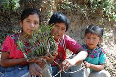 "Guatemalan children. From ""Vacationing or Volunteering in an Eco-Friendly Guatemalan Mountain Lodge."""
