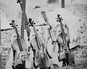 Violin photography print Black and White Guitar Banjo Folk Music Wall art Decor Studio Violinist musician gift Fiddle insturment strings