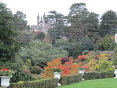 The Gardens    alton towers
