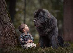 子供にとって唯一無二な存在。大きな犬に守られる小さな子供たちの仲睦まじき象徴的シーン