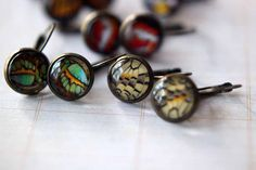 Butterfly Wing Earrings - Colorful Wing Segment Prints Under Glass Domes - Antiqued Brass - Under 10 - Stocking Stuffer
