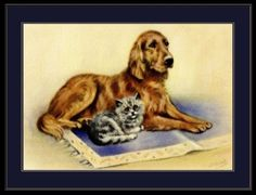 English-Picture-Poster-Print-Golden-Retriever-Dog-Grey-Persian-Cat-Kitten-Art