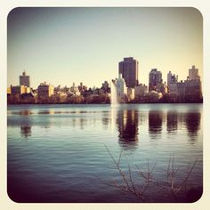 Central Park, NYC Jan 2012