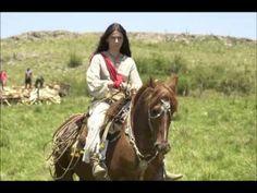 Cavalo Baio - Marcus Viana