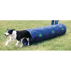 Dog Agility Tunnel -- Click image to review more details.