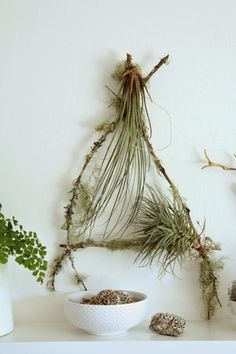 DIY Airplant & Lichen Covered Stick Wall Piece | make + haus