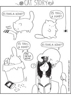 """Is this a food?"" Cat vs. Human"