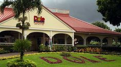 Visited the Dole Plantation in Hawaii