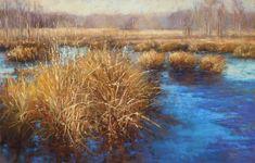 Ozark Wetlands