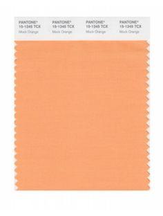 Pantone Smart 15-1245 TCX Color Swatch Card, Mock Orange - Pantone Swatches - Pantone Orange Pantone, Orange Pastel, Pantone Swatches, Mock Orange, Peach Fuzz, Almond Cream, Color Naranja, Light Peach, Spring Colors