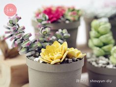 Paper Quilling Succulents plant