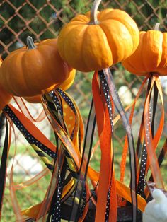 Magic Mini-Pumpkin Wands