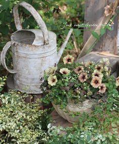 Junk sweet Garden tef*tef*