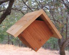 wren house tips