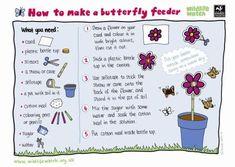 Butterfly Feeder activity sheet