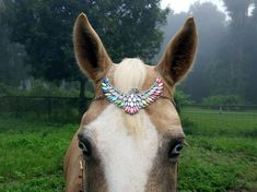 Eagle Bling Browband for Horse or Pony - Equine Tack Jewelry - Brow Band Equine Jewellry