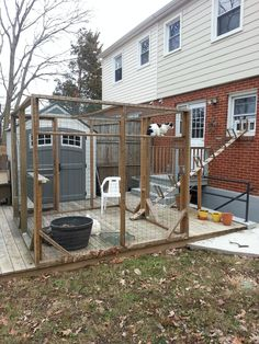 My catio 8x8x6 feet. There is a ramp from the window to my TV room. The use a pet door I got on amazon.