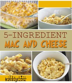 Whole Wheat 5-Ingredient Mac and Cheese Recipe   Thriving Home
