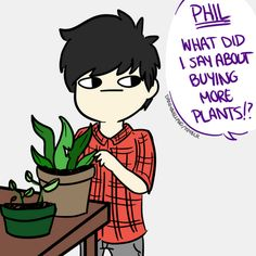 House plants are Phils aesthetic