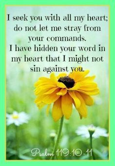 KJV:   10 With my whole heart have I sought thee: O let me not wander from thy commandments. 11 Thy word have I hid in mine heart, that I might not sin against thee.