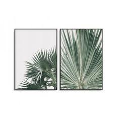 Zestaw dwóch plakatów - TROPICS DESIGN Safari, Design, Pictures