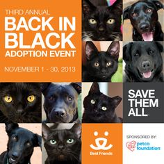 Back in Black, the national campaign dedicated to finding great homes for black cats and dogs, is back for a third lifesaving year! Research has shown that black animals often wait longer in shelters to find homes, so we're highlighting them starting tomorrow through the entire month of November by waiving adoption fees and flying our eligible adoptable pets from the Sanctuary home for free!