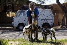 Nelson Vergara And His 42 Dalmatians | Fox News Latino