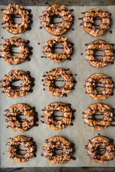 Out of Girl Scout Cookies? Make your own with Homemade Samoas Girl Scout Cookies! Girl Scout Cookies Recipes, Cookie Recipes, Girl Scout Shortbread Cookie Recipe, Girl Scout Samoas, Köstliche Desserts, Dessert Recipes, Plated Desserts, Samoa Cookies, Decorated Cookies