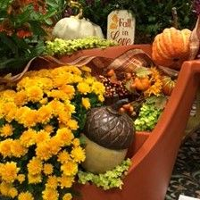 Fall planting in the Terra Cotta Broken Pot