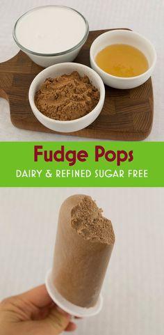 Healthy fudge pops: Coconut milk, cocoa powder, honey, and vanilla come together for a delicious, creamy frozen treat.