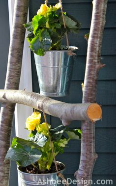 DIY Branch ladder with begonias by Ashbee Design