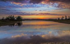 This photograph of the Sun rising in in Linwood Hampshire was taken by Nick…