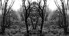 The Mirrored Photography of Traci Griffin | Beautiful/Decay Artist & Design