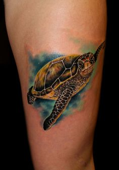 Sea Turtle tattoo by Chris 51 of Area 51 Tattoo in Springfield, OR & Epic Ink on A&E