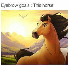Eyebrow goals: this horse. Anybody else grow up loving the movie spirit? Haha