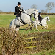 Sidesaddle: the most elegant form of badassery there is. ~ The Belvoir Hunt at Holwell. Photo by Nico Morgan Photography