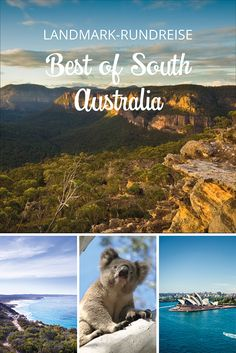 BEST OF SOUTH AUSTRA